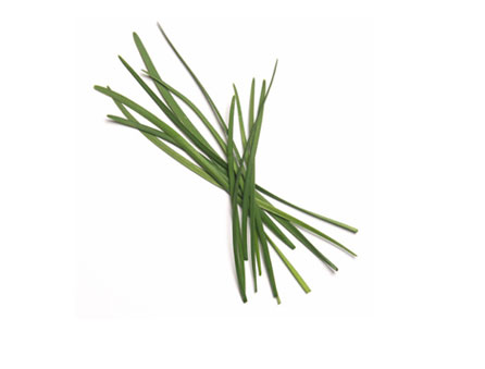 English Chives
